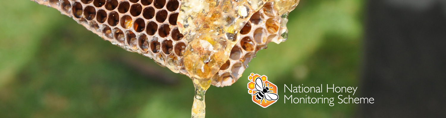Honey dripping from honeycomb