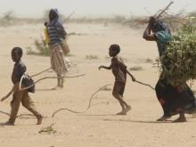 By Oxfam East Africa (A family gathers sticks and branches for firewood) [CC BY 2.0]