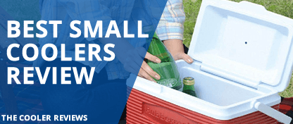 Best Small Coolers Reviews 2017