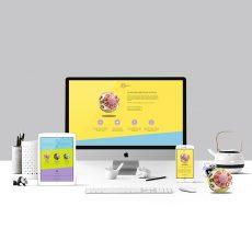 site-internet-vitrine-une-page-cereball-produit-autograff-graphiste-freelance-toulouse-mockup-featured