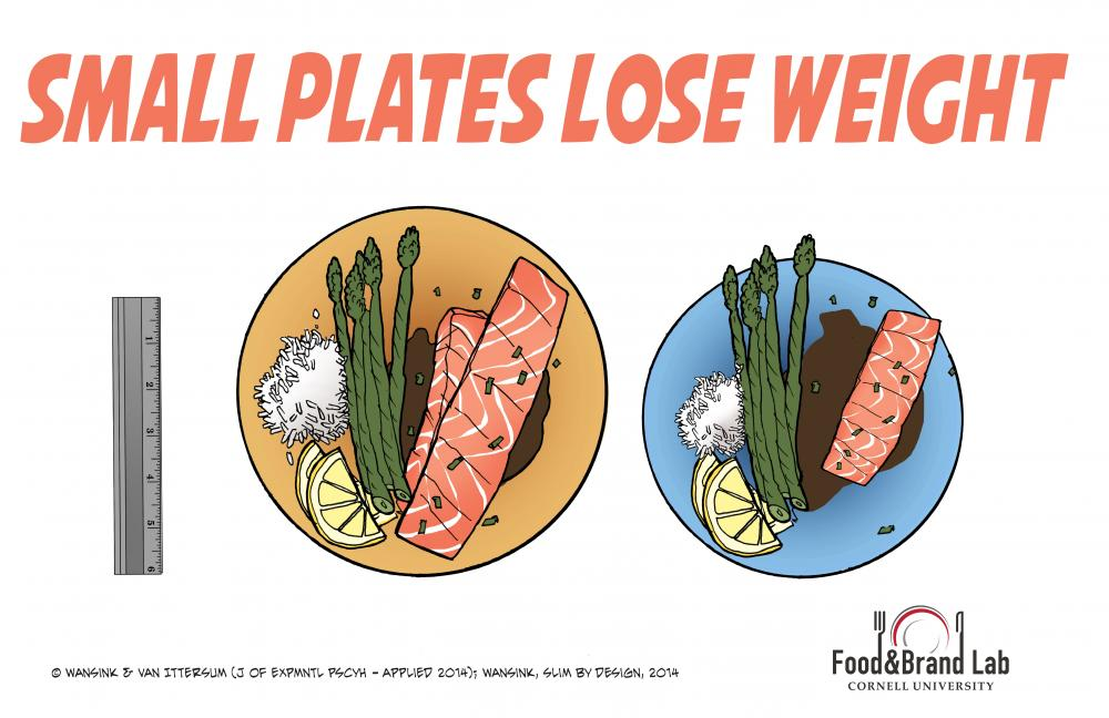 The Large Plate Mistake, Small plates lose weight, FASEB Journal, 2006, Van Ittersum, The Delboeuf illusion, optical illusion, Food and Brand Lab, infographic, Brian Wansink, Cornell University