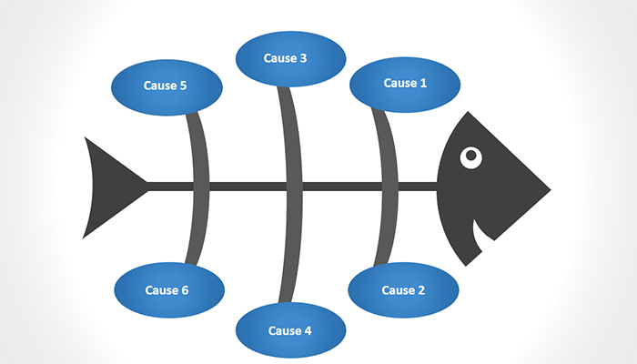 Kết quả hình ảnh cho biểu đồ xương cá