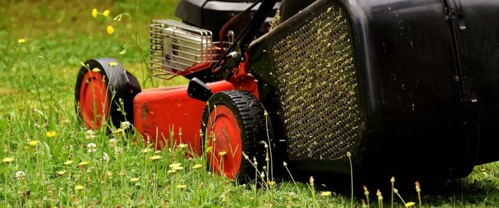 Choosing the Right Mower for Your Lawn