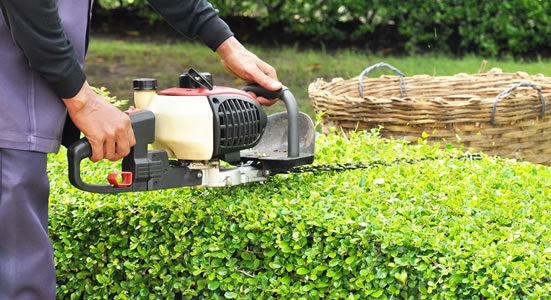 Choosing the best landscaping contractors