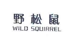 野松鼠 WILD SQUIRREL