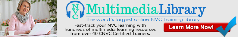 NVC Multimedia Library (790x125)