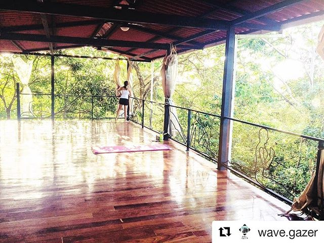 Sharing the love ♥️ #Repost @wave.gazer 🦎🦋🌱My favourite yoga and smoothie spot in the jungle canopy! La Buena Vida ✨🌺🌕 Surf, family, friends, yoga, fresh fruit... having a routine like this!! @labuenavidahotel
