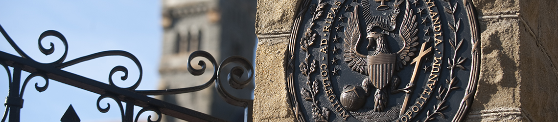 Detail of Healy gates