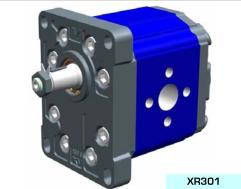 XR301系列双向泵