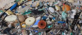 Henderson Island in the South Pacific has highest plastic waste density