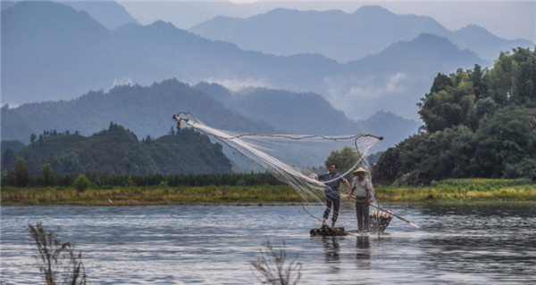 A soothing summer scene washes over Zhejiang