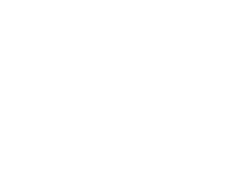 bk-perfection-footer-logo