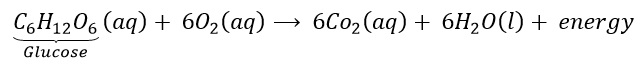 Class 10 Science - Chemistry Solutions 14