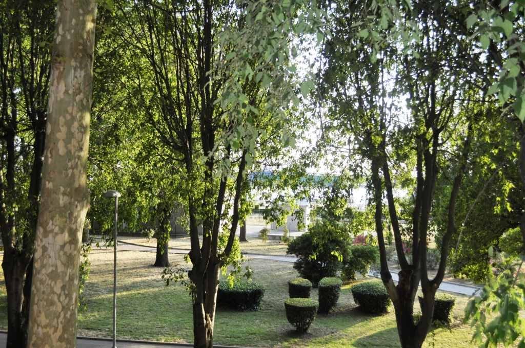Park-view