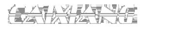佛山市彩翔灯光设备有限公司