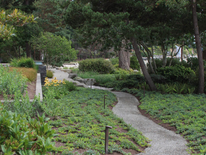About Us Image - Path restored after sewer repair
