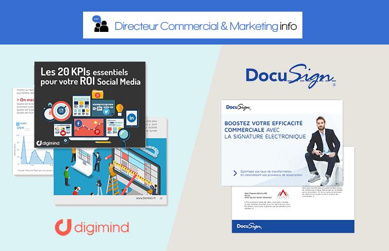 Directeur Marketing info