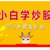 小白学炒股-股票教程-股票入门
