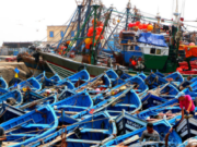 Biadillah: Morocco Can't Sign Fisheries Deal Excluding Sahara Provinces