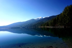 Beautiful Rara