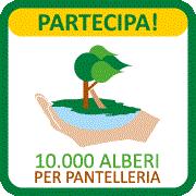 10.000 alberi per pantelleria