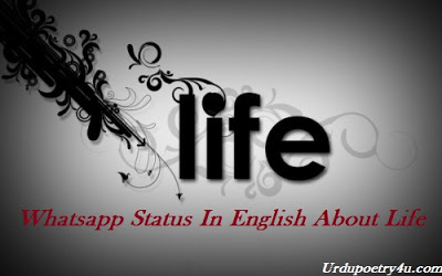 Whatsapp Status In English About Life