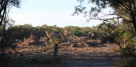 Ground shots of the clearing at the Iron Gates