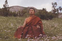 Der junge Garchen Rinpoche