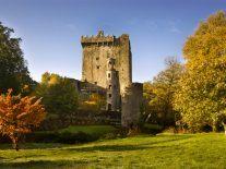Siro plans to make Cork the broadband capital of Ireland