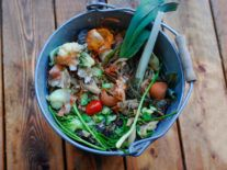 How food waste can be used as a valuable fuel source