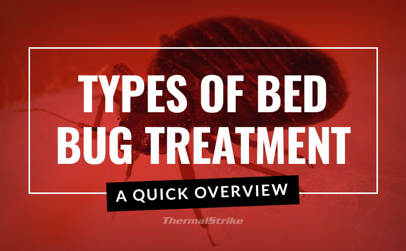Types of Bed Bug Treatment – A quick overview