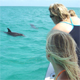Girls watch the dolphins