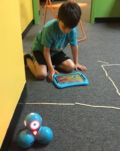 Robot Ecosystem