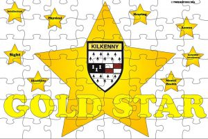 """Gold Star """"Access For All"""""""