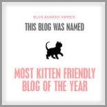 Kitten Friendly!