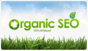 Natural Organic SEO Services in Atlanta GA