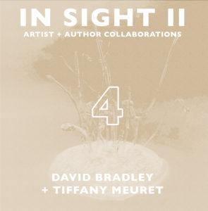 In Sight II 04: David Bradley + Tiffany Meuret