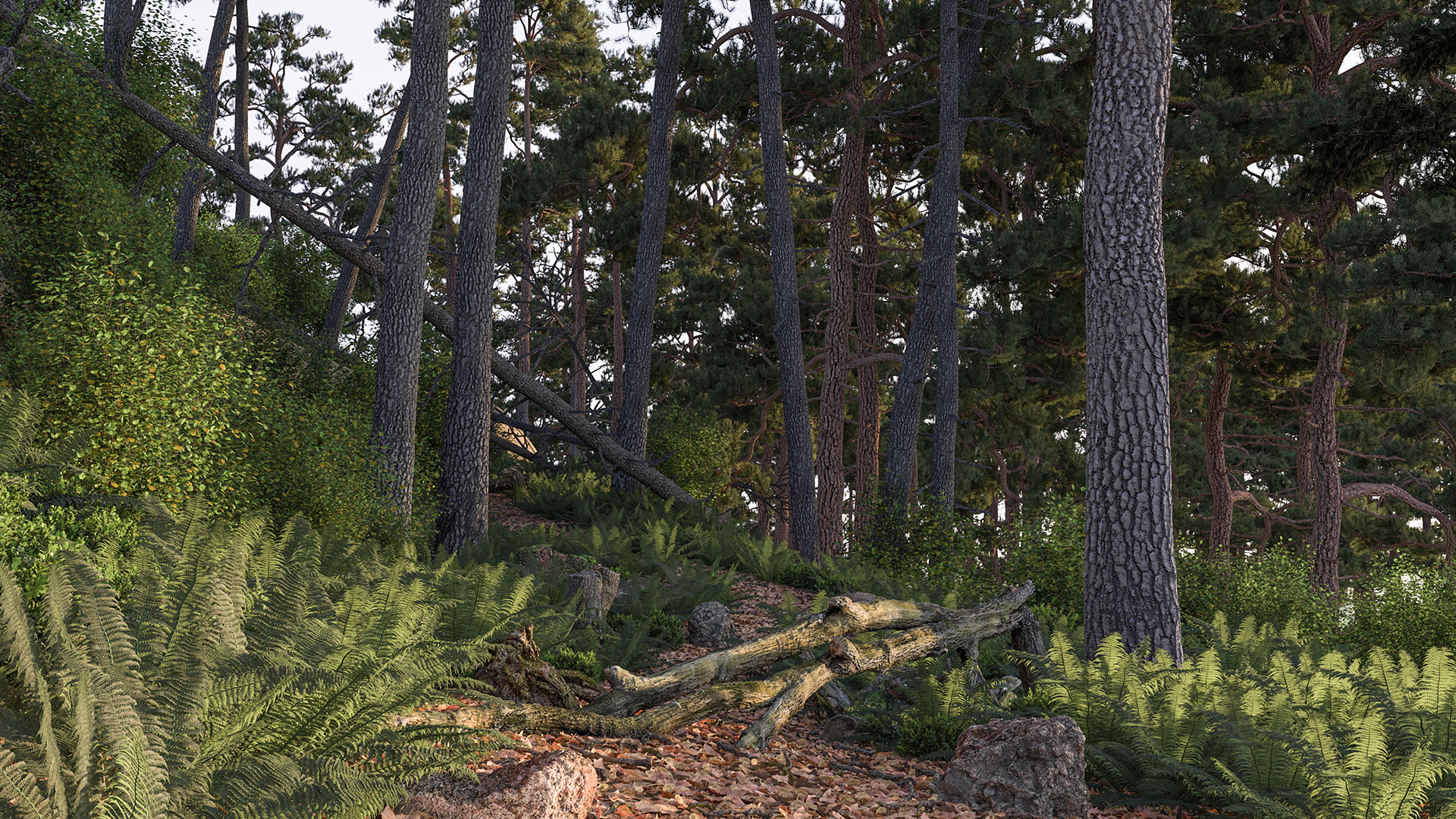 Figure 1: A forest scene in the morning, rendered using Takua Render. 6 GB of textures on disk accessed using a 1 GB in-memory texture cache.