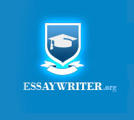 essaywriter products and services