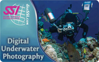 Digital Underwater Photography SCUBA Class Certification