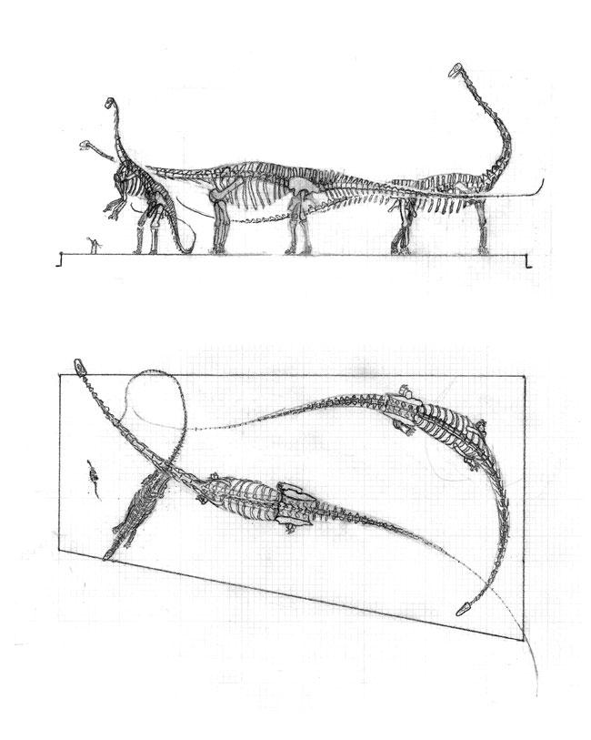 FossilogicSketch