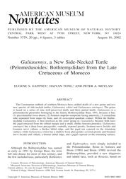 N3379-Galianemys-1