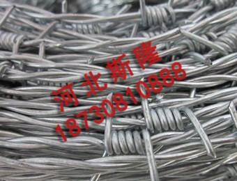 镀锌刺绳 (1)
