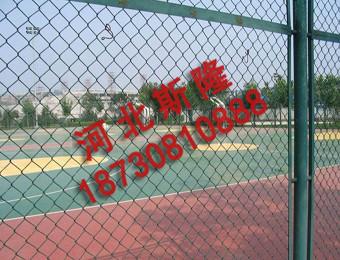 体育场护栏 (1)