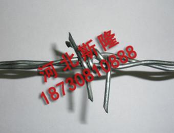 镀锌刺绳 (2)