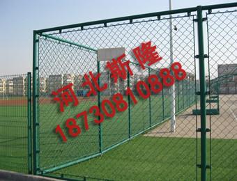 体育场护栏 (4)