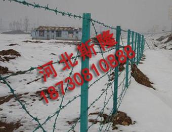 刺绳防护网 (2)