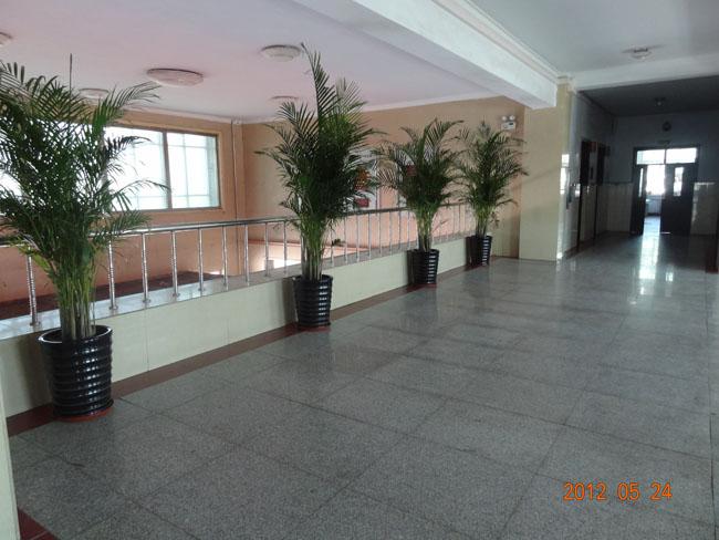 东校区教学楼平台
