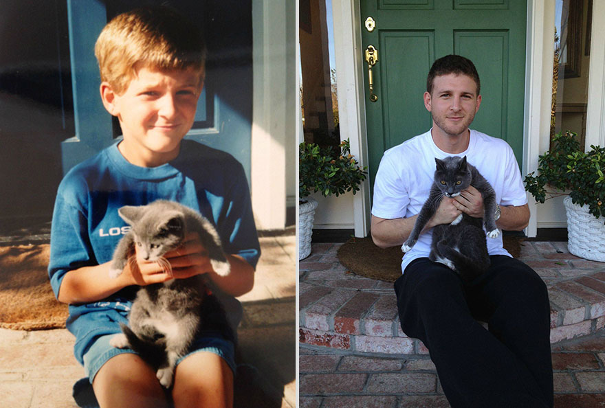 pets-before-after-2
