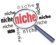 niches-fiscales